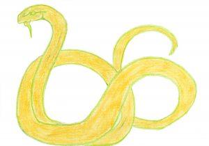 Joan Jonas Coil Snake Print